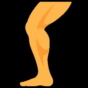 Otot Kaki